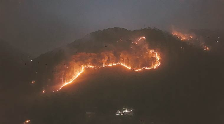 'Over 90 per cent of forest fires are man-made'