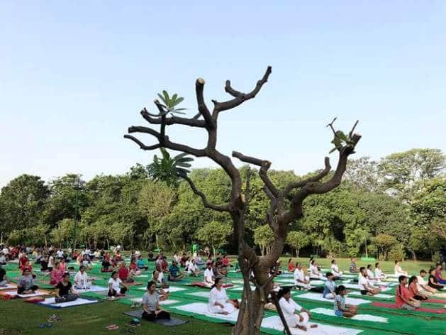 Yoga day, international yoga day, international yoga day june 21, june 21, when is june 21, international yoga day celebration, what is yoga day, when is yoga day, why is yoga day celebrated, indian express