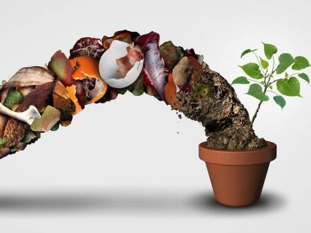 compost, life cyle of garbage, teach kids to compost