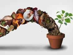 Kinder Garden: Compost, from garbage togold