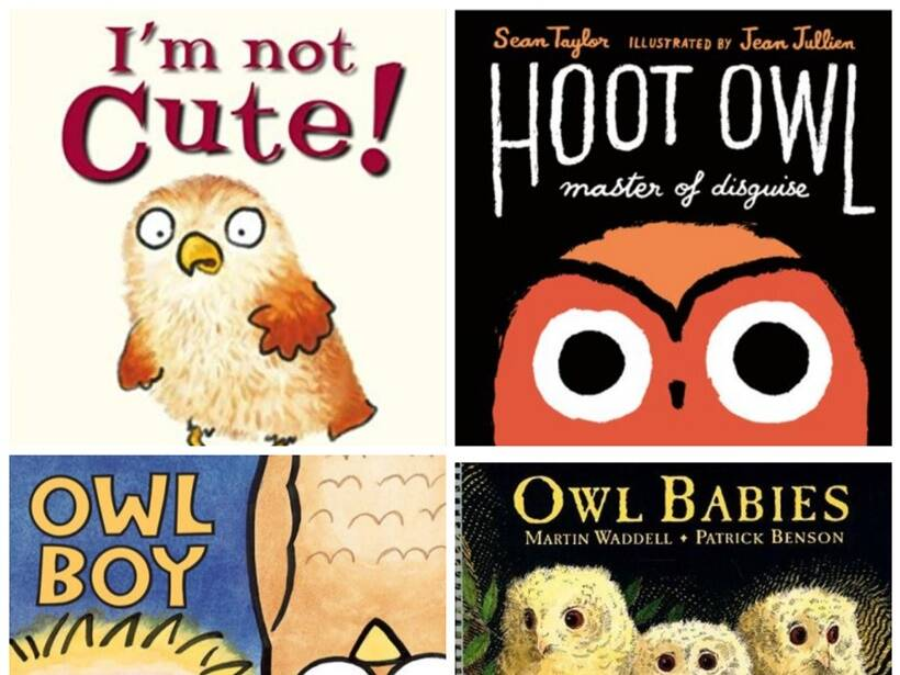 Owl-themed books, kids love owls