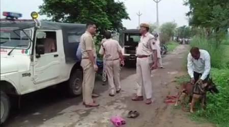 Rajasthan: Man lynched by villagers in Alwar on suspicion of cow smuggling