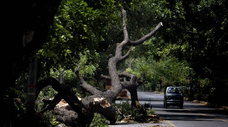 14 deaths in natural calamities every day since April