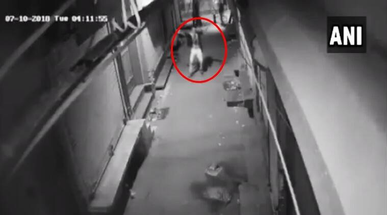 cctv videos, thief dancing cctv videos, cctv thief dancing footage,delhi thief dancing video footage viral, Indian express, Indian express news