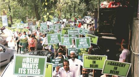 Delhi tree felling: Death by a thousand cuts