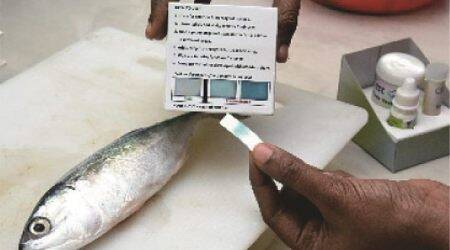 Goa lifts ban on fish import, keeps strict vigil on border