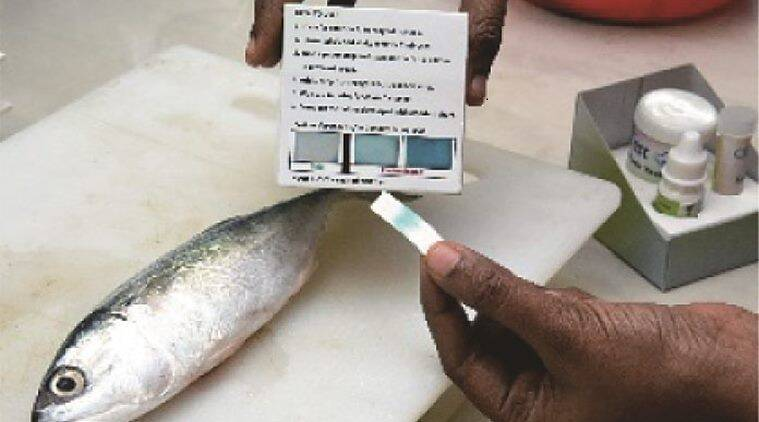 As a formalin-in-fish scare sweeps through several states, these kits are expected to hit the market by the end of the month.