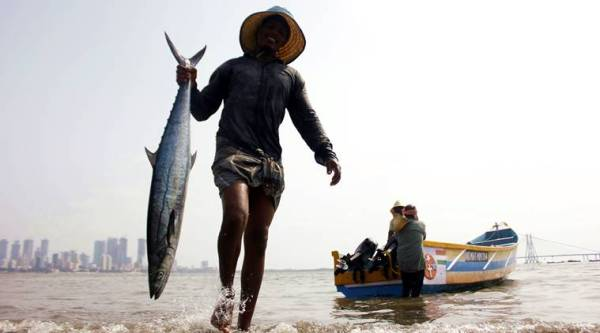 Goa Congress seeks ban on fish imports over presence of formalin