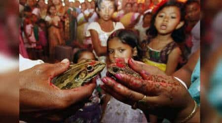 Indian folklore, tribal people, how tribals invoke rainfall, Chhatarpur, Madhya Pradesh, Monsoon Ecologies, MD Muthukumaraswamy, Assam, tamil nadu, jharkhand, West bengal, odisha, bihar, indian express, indian express news