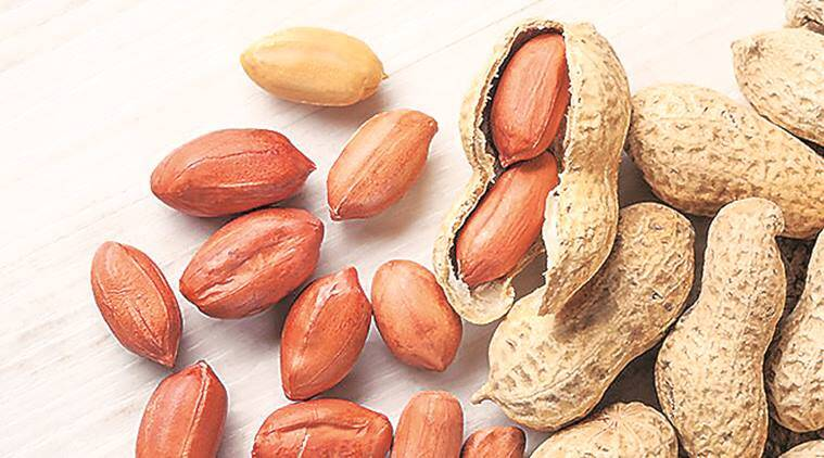 Gujarat Government: Over 60,000 farmers registered to sell groundnut