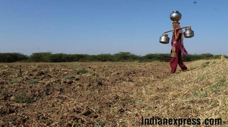 Forced to walk miles, India water crisis hits rural women hardest