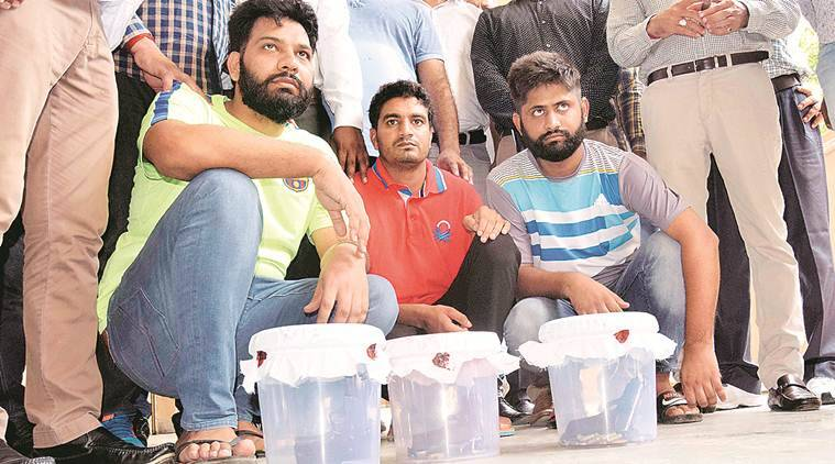 Panchkula: Three wanted criminals arrested, get five days' police remand