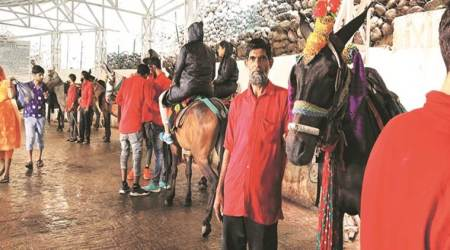 Munshi has been ferrying pilgrims on his pony Channu since he was 14. (Express photo/Arun Sharma)