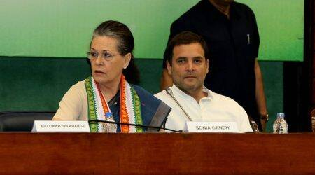 At Congress Working Committee, party underlines: Rahul Gandhi leader, there is a need for allies