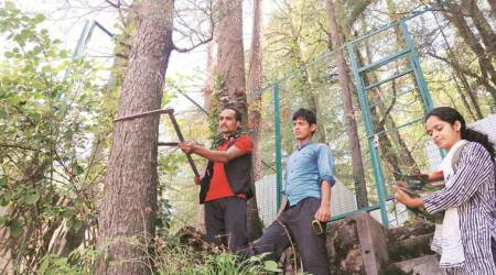 GPS, radio tags, drones in Shimla's fight against tree-felling