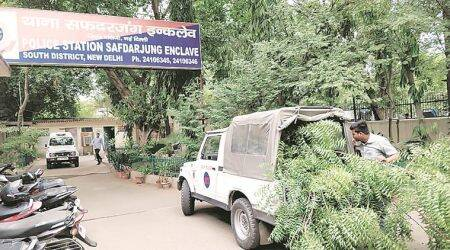 Delhi Police seek Forest Dept expertise in tree-felling case