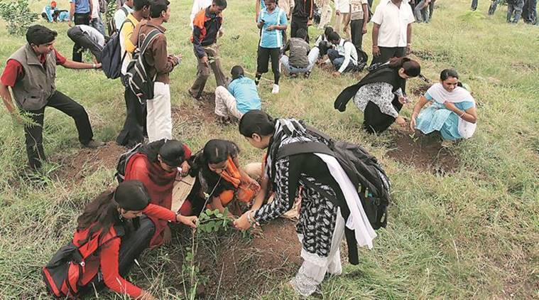 Facing decreasing revenues, Pune Municipal Corporation reluctant to extend property tax discount for plantation drives