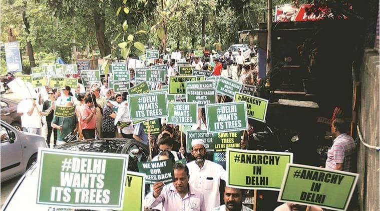 felling of trees, Delhi High court, Delhi HC on Felling of trees, delhi tree cutting, NGT, Delhi news, Indian express news