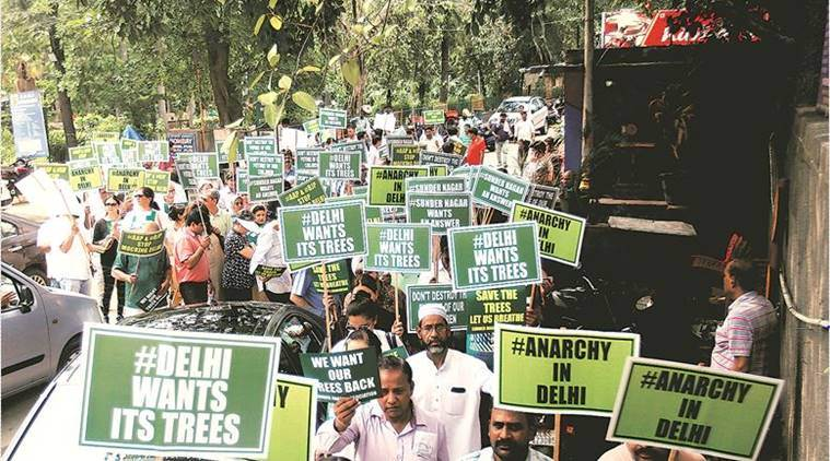 felling of trees, Delhi High court, Delhi HC on Felling of trees, delhi tree cutting, NGT, Delhi news, Indian express news