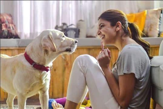 anushka sharma animal love