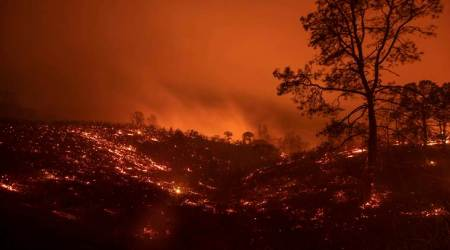 World news wrap | Biggest wildfire ever recorded in California history