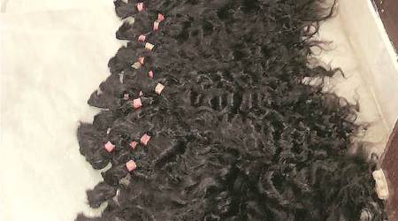 Behind theft of 200 kg of wigs, a competitor desperate to repayloan