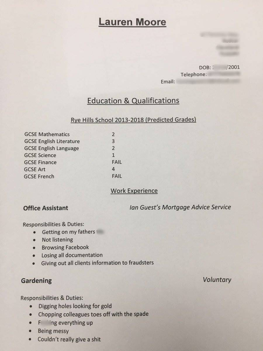 Teen daughter asks father to write her CV, and the savage resume is ...