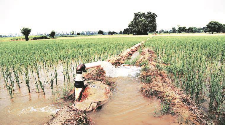 devendra fadnavis, maharashtra drought, maharashtra government, drip irrigation, crop irrigation, mumbai news, indian express news