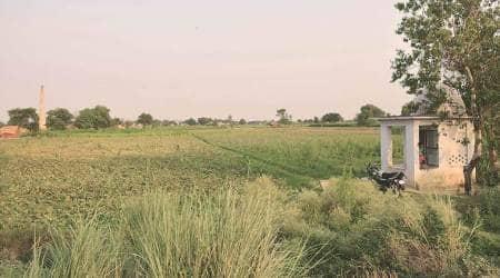 Pradhan Mantri Fasal Bima Yojana: Farmers wait up to 18 months for claims