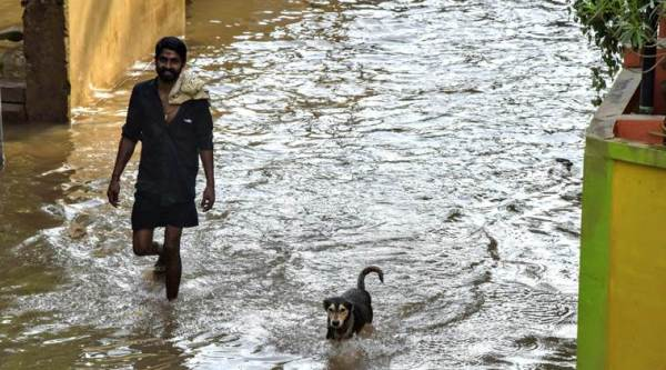 Government to rope in NIUA to look into causes of urban flooding