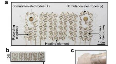 Wearable electronic mesh can help monitor heart health