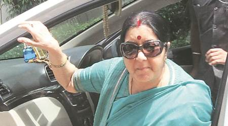 Swiss minister discusses exchange of information with Sushma Swaraj