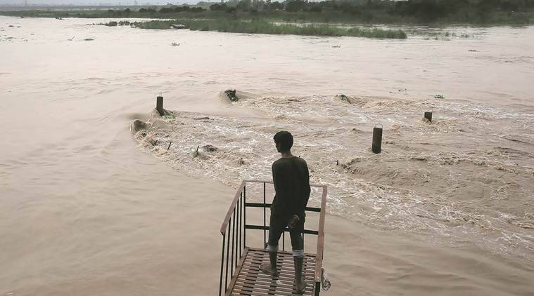 Haryana on alert as water level increases in Yamuna