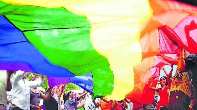 Section 377 verdict: File petitions were filed by well-known LGBTQ activists.