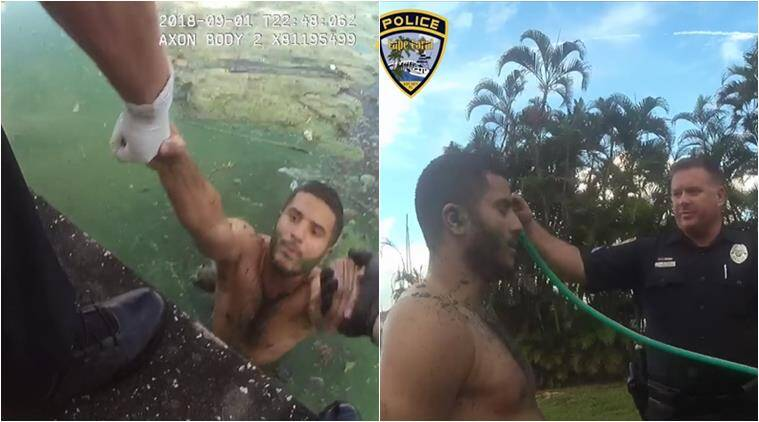 algae helps cop arrest, florida canal algae helps cops, funny video, funny police chase, stupid criminal video, funy news, viral video, indian express