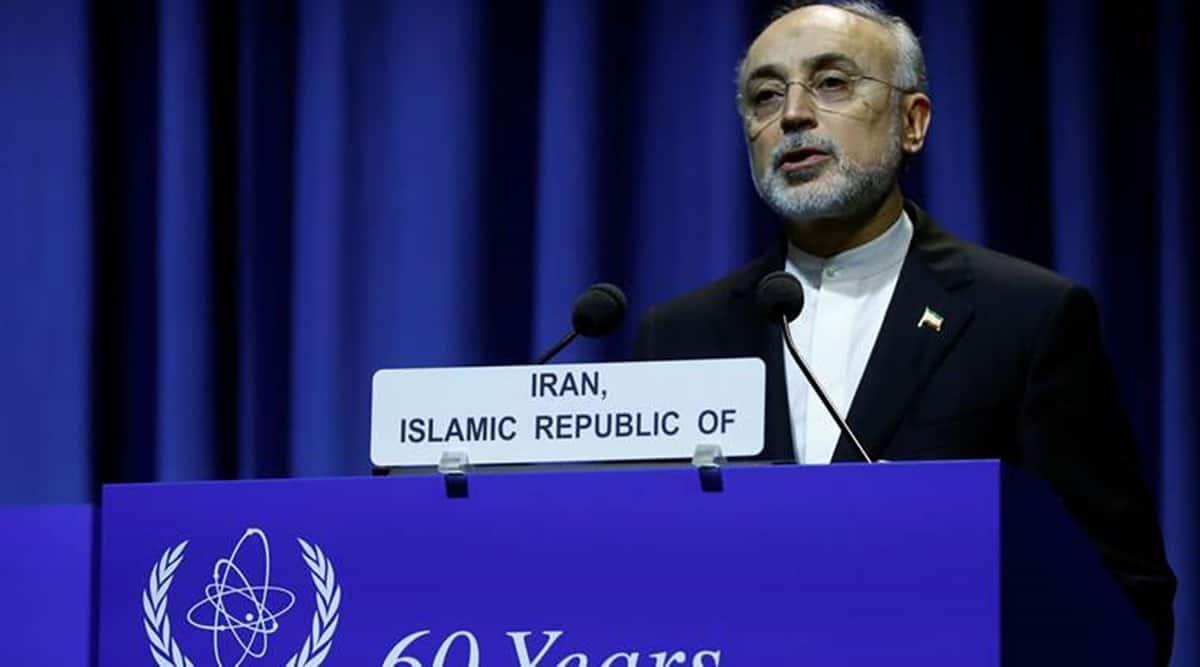 IAEA, IAEA chief, Iran nuclear issue, International atomic agency, Iran, JCPOA, World news, Indian Express