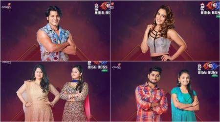 bigg boss 12 premiere contestants