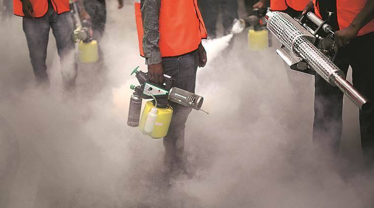 Pune: PMC registers 74 dengue, 59 chikungunya cases this year, steps up surveillance