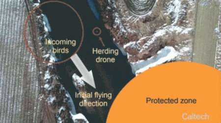 Robotic drones, unmanned aerial vehicles, Imperial College London, drones controlling airspace, California Institute of Technology, herding algorithm, Korea Advanced Institute of Science and Technology, flocking models, avaition industry birdhits
