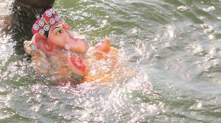 Surat throws rules to the wind, 'immerses Ganesh idols in Tapi'