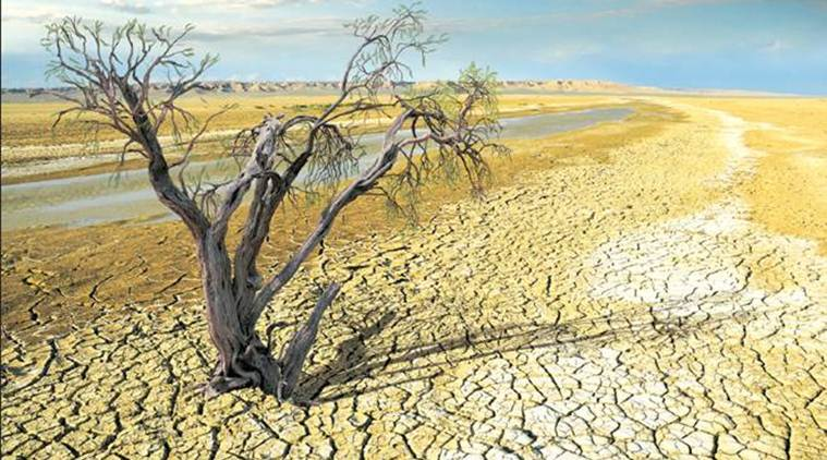 climate change, el nino, el nino conditions, pacific ocean, warming of pacific ocean, australia, flood, drought, agriculture, wheat, crops, farmers, weather, world news, indian express news