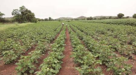 Maharashtra govt plans to use drones inagriculture