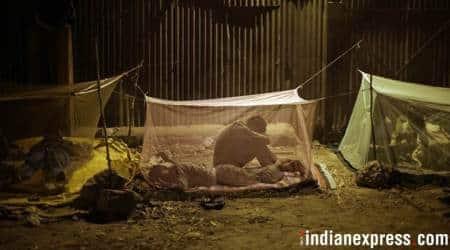 lok sabha elections, lok sabha elections 2019, lok sabha polls. elections in india, congress, rahul gandhi, nyay, nyuntam aay yojana, poverty, poverty elimination, raghuram rajan, indira gandhi, indian express news