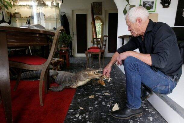 Scaly, scary lodgers: Frenchman shares home with 400 reptiles