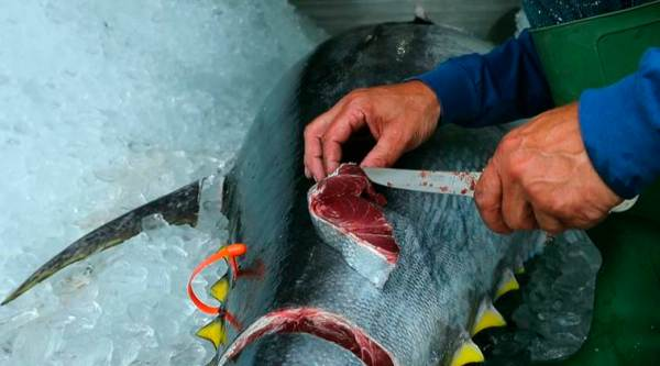 Asia's rising appetite for meat, seafood will 'strain environment'