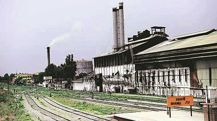 Uttar Pradesh, sugarcane farmers, sugarcane irrigation, Sugar industry, sugar prices, uttar pradesh, UP faremers, UP farmers loan, yogi adityanath, cane farmers loan, indian express