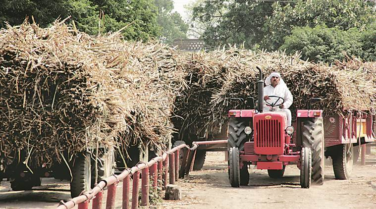 Uttar Pradesh, sugarcane farmers, sugarcane irrigation, uttar pradesh, UP faremers, UP farmers loan, yogi adityanath, cane farmers loan, indian express