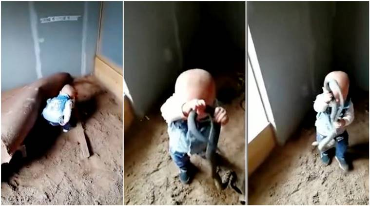 child holds snake, toddler sits in snake nest, kid snake viral video, toddler with snakes, toddler handles snake,