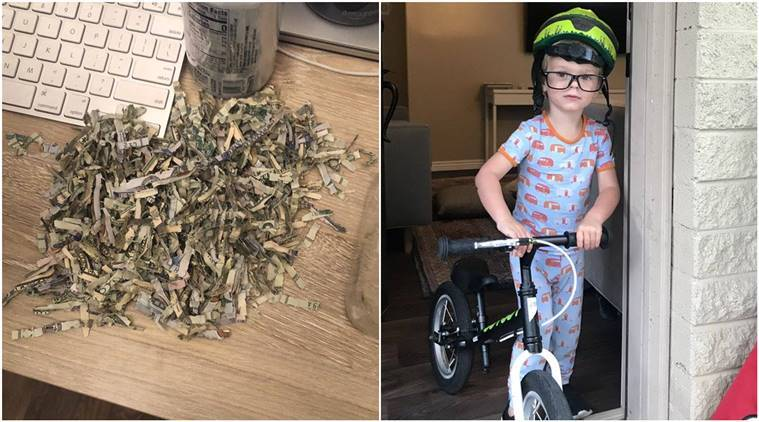 Toddler shreds over ,000, child shreds parents saved money, child shreds money, viral tweet