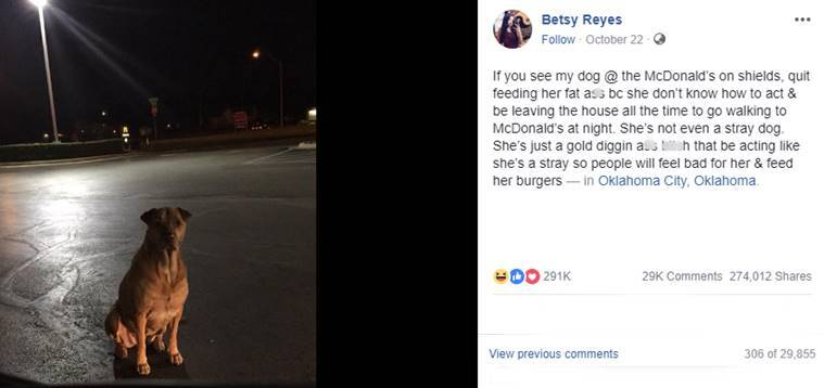This dog owner says her pet is a 'gold digger'  Here is why